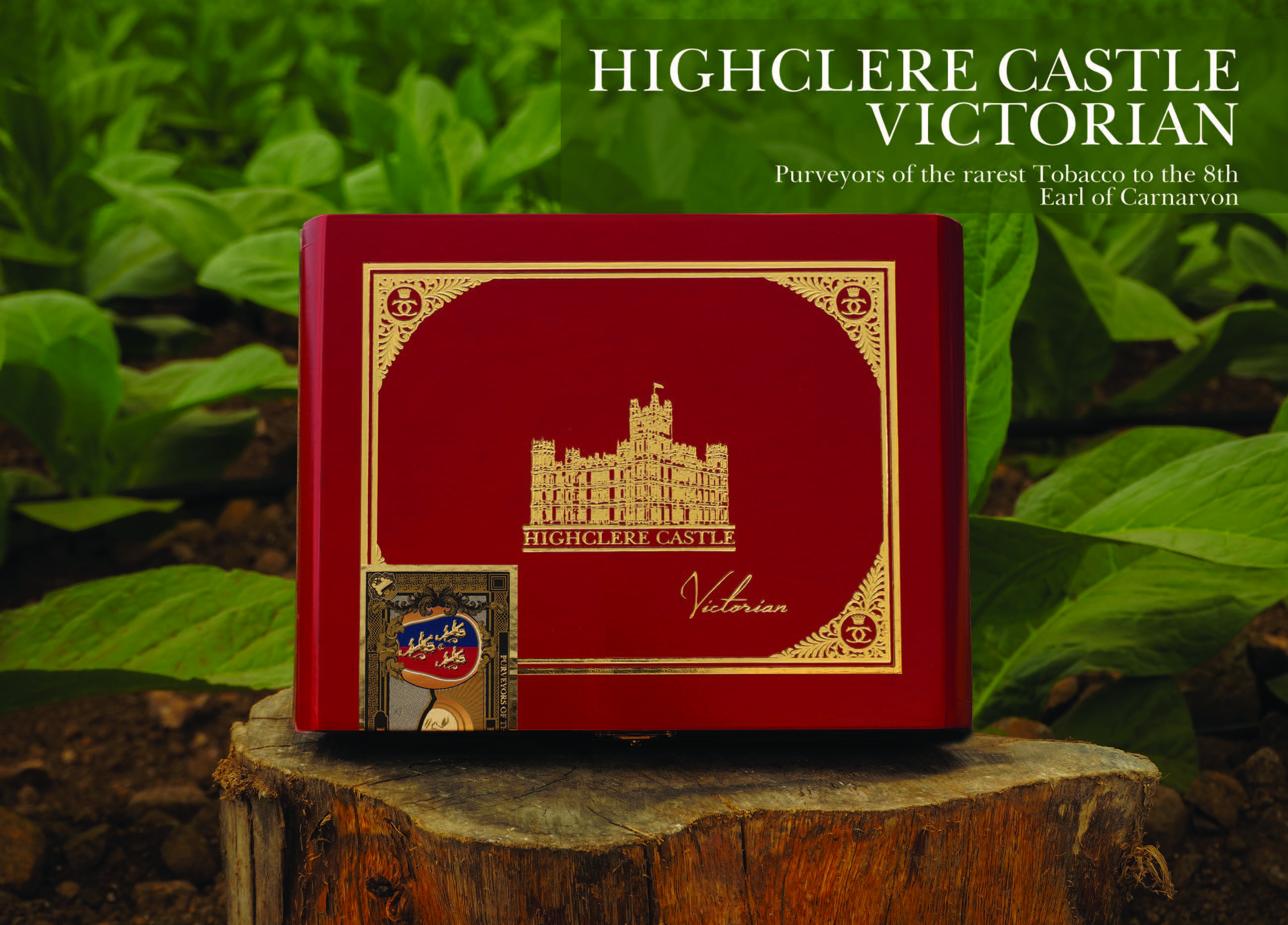 Highclere Castle Habano